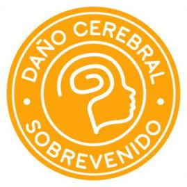 Logo_DCS_382x382